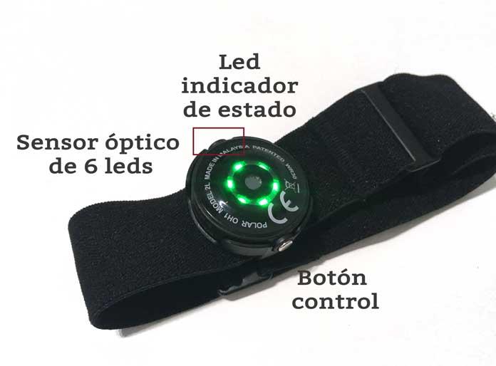 control y leds de aviso pulsómetro polar oh1 de antebrazo